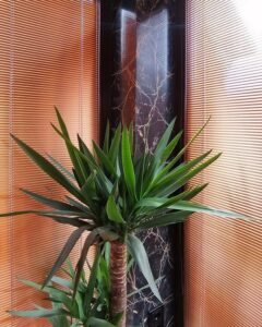 деревянные жалюзи в гостиной фото 2